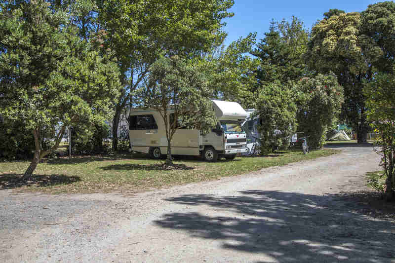 campervan in trees_Easy-Resize.com