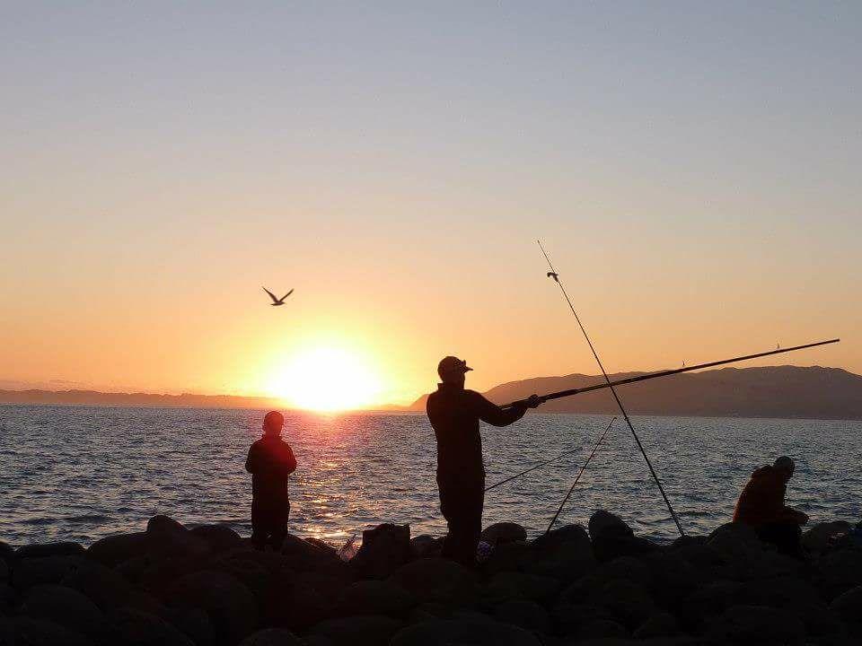fishing-adults